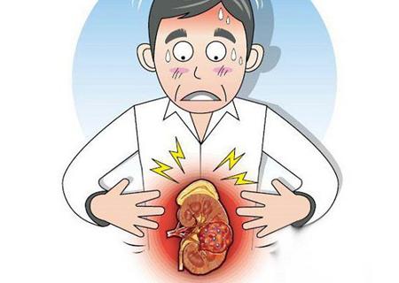Viêm đường tiết niệu có thể gây biến chứng tới thận